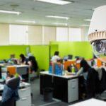 My Office Need CCTV